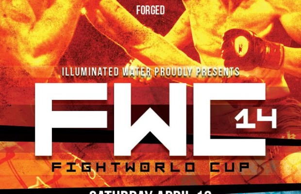 Fightworld Cup 14 Poster